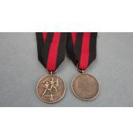 WW2 German Sudetenland Medal With Prague Ribbon - in Bronze